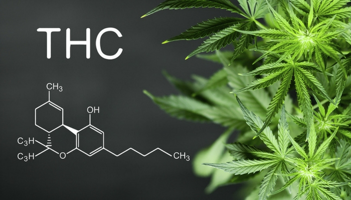 CBD vs. THC for Anxiety
