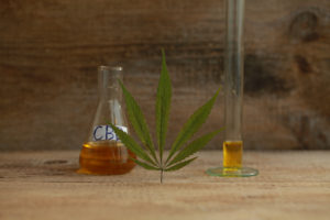 cannabis oil cbd image
