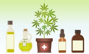 marijuana plant and cannabis oil image